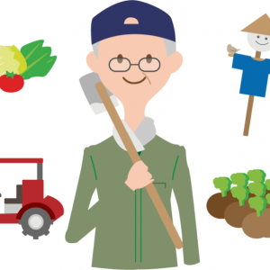 野菜作りを楽しめる畑のレンタルサービス!?