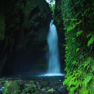 「西郷どん」の撮影にも使われた秘境滝
