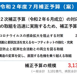 東京都3100億円追加予算、小池知事自身が答弁すべし!