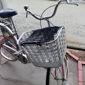 10日目  最後は自転車