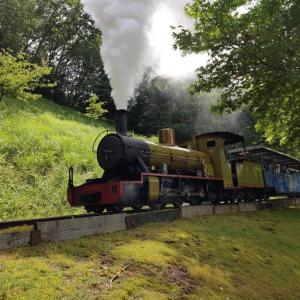 修善寺 虹の郷 日本唯一の小さい鉄道「ロムニー鉄道」に乗って子どもとお散歩