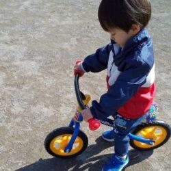 子供が大喜び【小さい子用のオシャレなバイクをお得にゲット】景品と交換できるスギ薬局のポイント