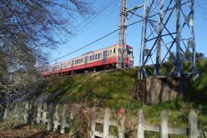 武蔵野公園【おすすめ鉄道ビュースポットがある都立公園】小さい子が遊べる遊具もある