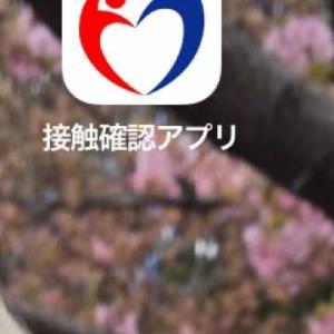コロナ 接触感染アプリ