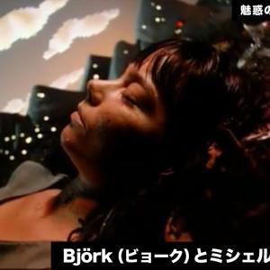 【魅惑のMVクリエイター③】 Björk(ビョーク)とミシェル・ゴンドリー