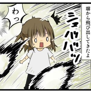 長野で出会った丸くてすばしっこい何か