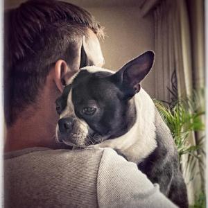 犬を飼うという事。