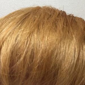3回ブリーチ済の髪をネイビーブルーに染めてみた【Beauteen】