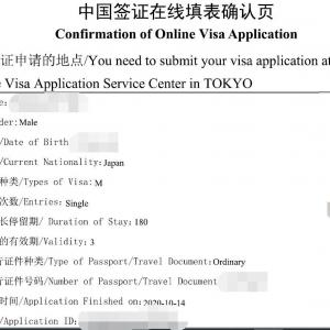 ビザ申請 Web