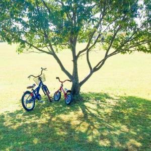 【自転車旅】あえてママチャリで旅(サイクリング)をするメリット6選とデメリットへの対策3選