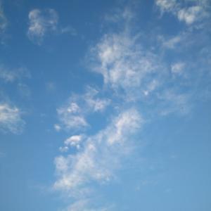 又、梅雨の晴れ間の、、、。
