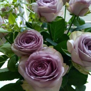 薔薇の花束。