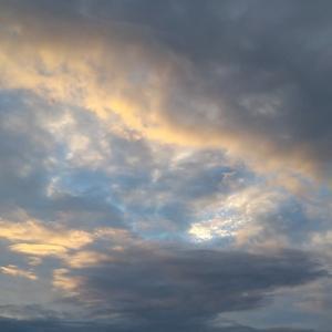 秋雨前線と台風