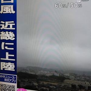 静かな台風。