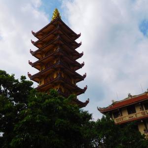 ベトナムで感染力が強い型のウィルスが流行(A highly contagious virus has spread in Vietnam)