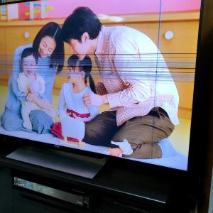 液晶テレビ保護パネルの必要性〜買って良かった〜