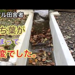 水路の詰まりを取りながらの水通し|水路掃除