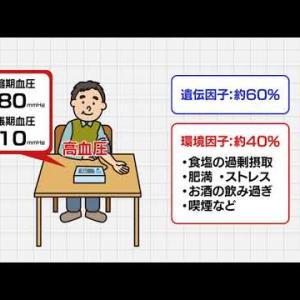 【高血圧】正しく理解しよう「高血圧」① 高血圧の原因と早期発見の重要性について考える