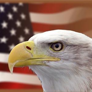 アメリカ株へ投資する4つの理由