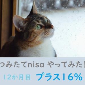 つみたてnisa やってみた! 12ヶ月目(プラス16%✨)