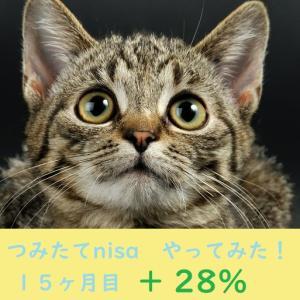 つみたてnisa やってみた! 15ヶ月目(プラス28.9%✨)