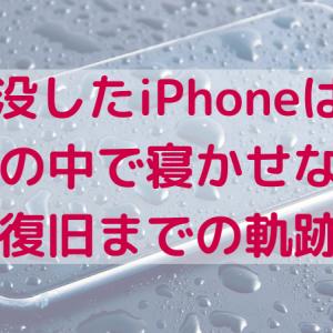 水没したiPhoneは、お米の中で寝かせなさい~復旧までの軌跡~