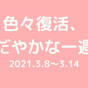【ゆる週記】色々復活、おだやかな一週間(2012.3.8~3.14)