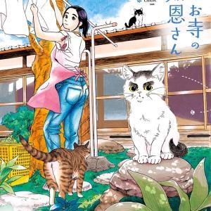 猫のお寺の知恩さん-03巻