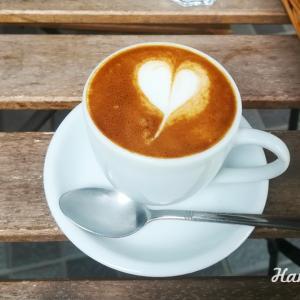 横浜山下公園「Cafe Elliott Avenue」シアトルから豆を空輸するカフェのテラス訪問。テイクアウトも大人気!