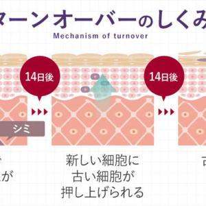 shimaboshi(シマボシ)の価格-ヒアルロン酸美白美容液