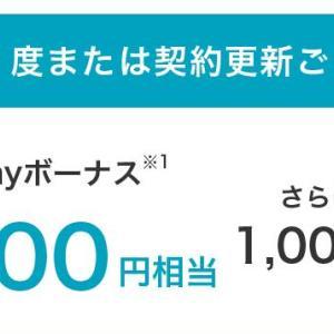 今月も本日ソフトバンクからPayPayボーナス付与がありました。更新ごとにもらえるPayPayボーナス付与です。