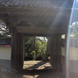久しぶりに鎌倉山の檑亭でお蕎麦をいただきました
