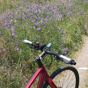 サイクリング 日焼け注意