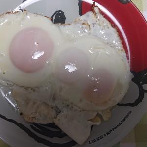 誕生日と双子の卵