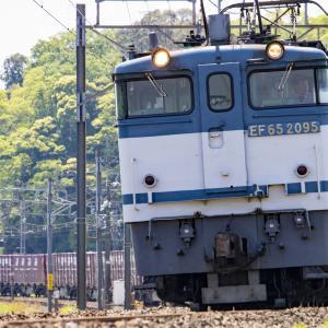 フルコンのEF65形とEF64形電気機関車を撮影!⚡
