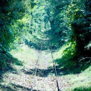 銚子電鉄の緑のトンネル@本銚子~笠上黒生