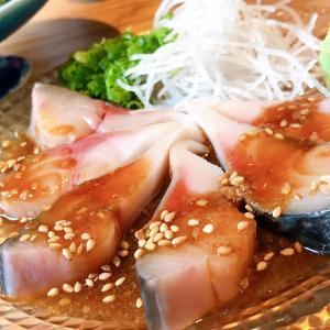 人生で一番美味しかった鯖を日本酒と楽しむ魚人