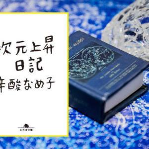 34冊目 『次元上昇日記』