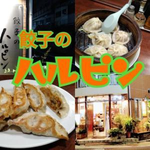 【三鷹】巷で有名な『餃子のハルピン』で心ゆくまでひとり飲み!