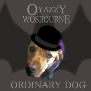 オジー・オズボーンの「オーディナリー・マン」ジャンルを超えた傑作ロックアルバム Ozzy Osbourne/Ordinary man