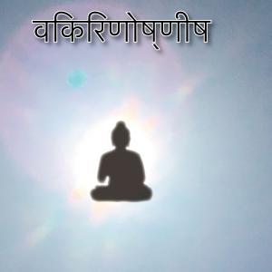 新しい音楽はアジアから Tinna Tinh / Buddhist Mantras Vol.1