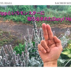 フリップというモンスターに取り込まれたダリル・ホール Daryl Hall / Sacred songs(1980年)