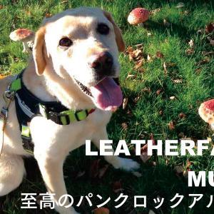 Leatherface/Mush(1991) レザーフェイス「マッシュ」90年代最高のパンクロックバンド