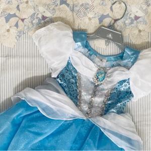 【購入レポ】Shop disney Cinderella