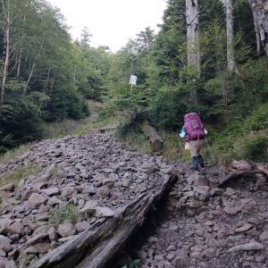 コロナだから100名山に登り始めたって......?