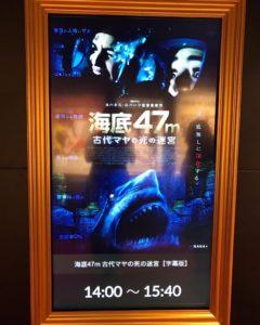 人食いザメの恐怖を描くパニックスリラー映画『海底47m 古代マヤの死の迷宮』