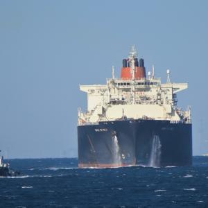 東京湾フェリーに乗ってきた カモメいないから船を撮るw