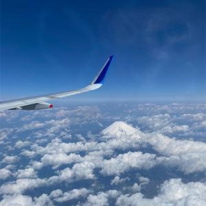 富士山観ながら大阪日帰り。美々卯と湊町リバープレイスで癒される