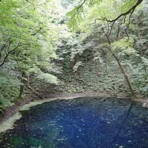 世界遺産【白神山地】で緑を浴びる!青池でラピスラズリな神秘ブルー体験