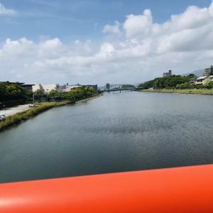 【オススメ】高知市のランニングコースその5~鏡川、市営・みどりの広場編~